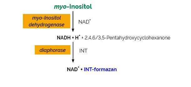 Scheme-K-INOSL INOSL Megazyme