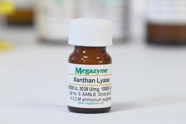 Xanthan lyase Bacillus sp E-XANLB