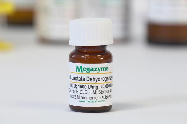 D-Lactate dehydrogenase Leuconostoc mesenteroides E-DLDHLM