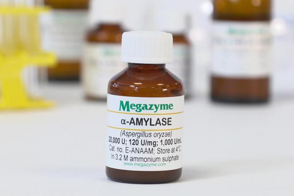 alpha-Amylase Aspergillus oryzae E-ANAAM