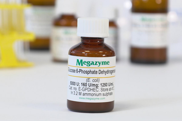 Glucose-6-phosphate dehydrogenase Escherichia coli E-GPDHEC