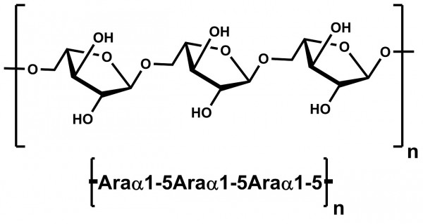 Linear 1-5-alpha-L-Arabinan Sugar Beet P-LARB