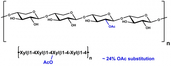 Xylan Birchwood partially acetylated P-ACXYL
