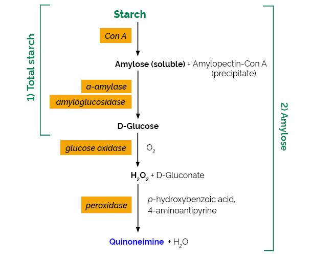 Ams Sugar Ii amylose amylopectin assay kit test - buy amylose amylopectin