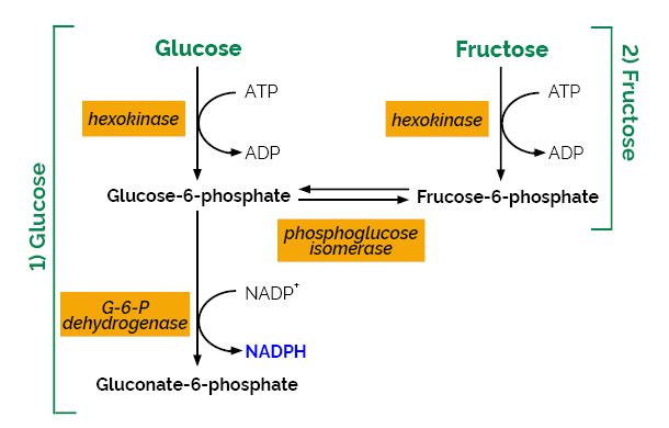 D-Fructose D-Glucose Assay Kit K-FRUGL Scheme