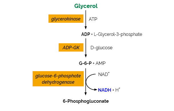 Scheme-K-GCROLGK GCROLGK megazyme