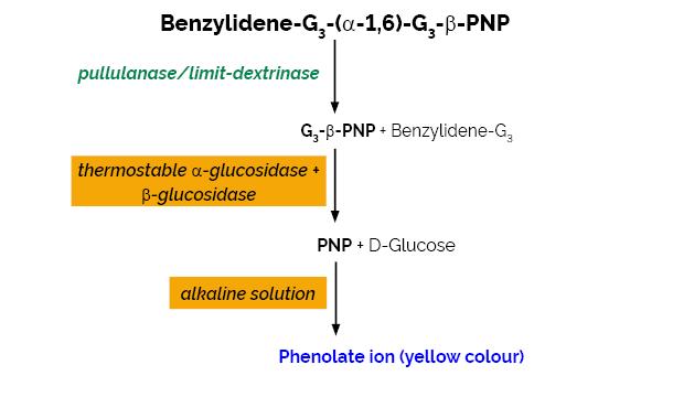 Scheme-K-PullG6 PullG6 Megazyme