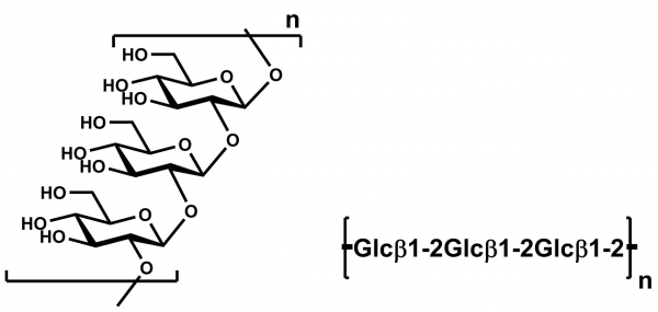 1,2-beta-Glucan P-BGLU12