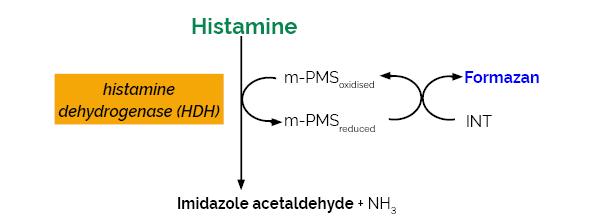 Histamine Assay Kit K-HISTA Scheme