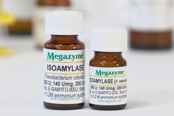 Isoamylase Flavobacterium odoratum E-ISAMYFO