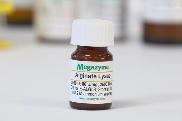 Alginate lyase Sphingomonas sp E-ALGLS