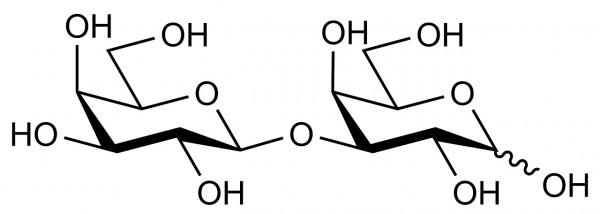 1-3-beta-D-Galactobiose O-GBI3