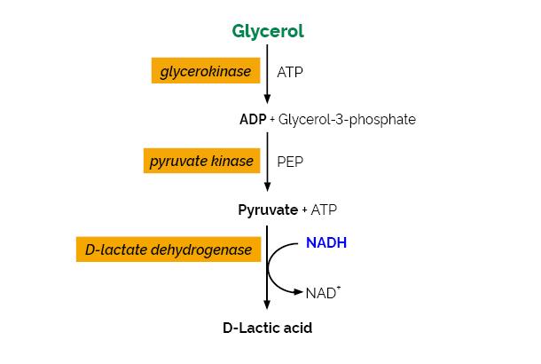 Glycerol Assay Kit K-GCROL Scheme