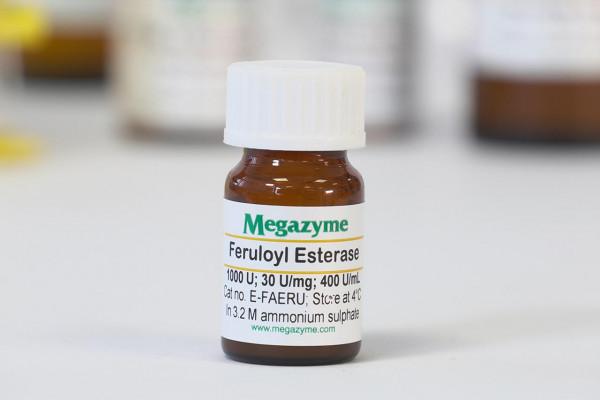Feruloyl esterase rumen microorganism E-FAERU FAERU