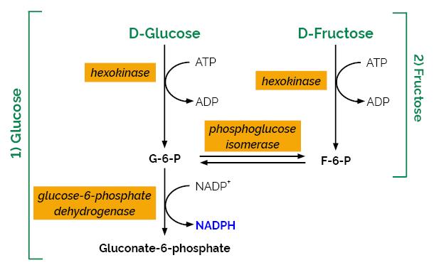 Scheme-K-FRGLQR FRGLQR Megazyme
