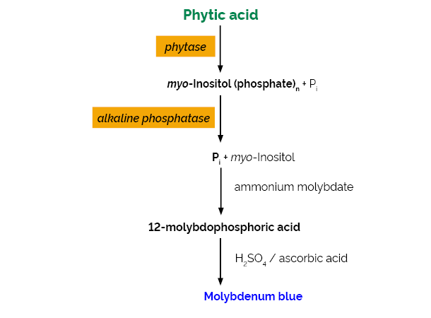 Scheme-K-PHYT PHYT Megazyme
