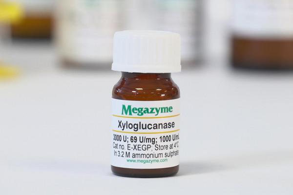 Xyloglucanase GH5 Paenibacillus sp E-XEGP