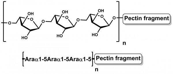 Debranched Arabinan Sugar Beet P-DBAR