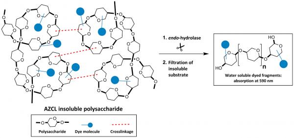 AZCL-Galactan Potato fine I-AZGLPF