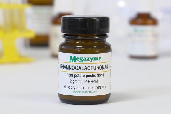 Rhamnogalacturonan I Potato P-RHAM1