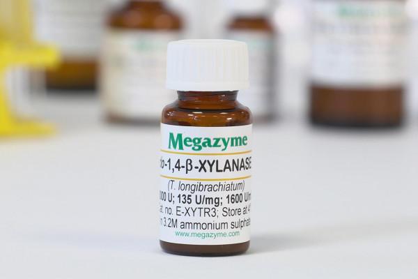 endo-1-4-beta-Xylanase M3 Trichoderma longibrachiatum E-XYTR3