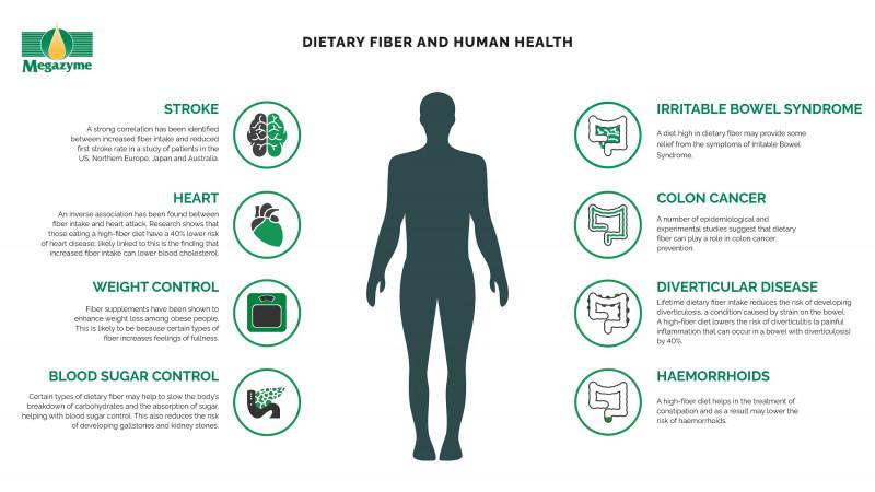 Dietary Fiber Health Benefits Advantages Of High Fiber Foods Megazyme