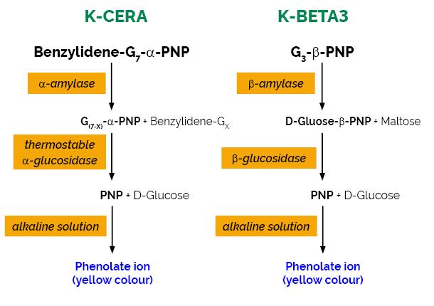 scheme-K-MALTA MALTA MEgazyme