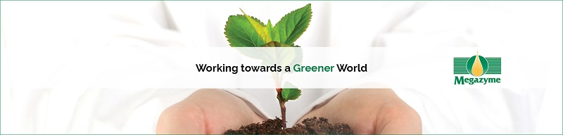 Working-towards-a-Greener-World-News-Page