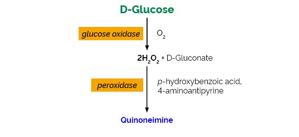 Scheme-K-GLUC GLUC Megazyme