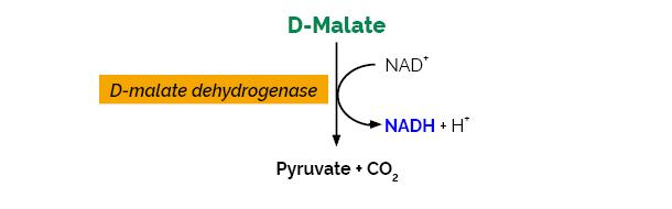 Scheme-K-DMAL DMAL Megazyme