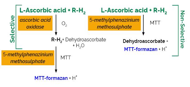 Scheme-K-ASCO ASCO megazyme