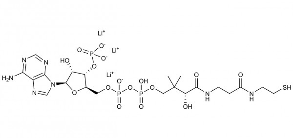 COENZYME A CoA Trilithium Salt C-COA500