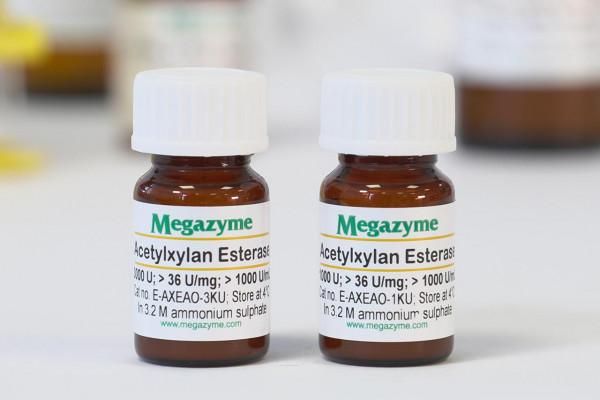 Acetylxylan esterase Orpinomyces sp E-AXEAO