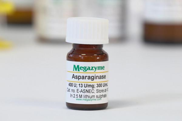 Asparaginase E coli E-ASNEC