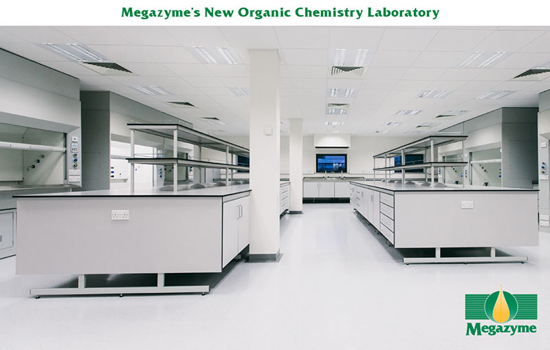 organic-chemistry-lab