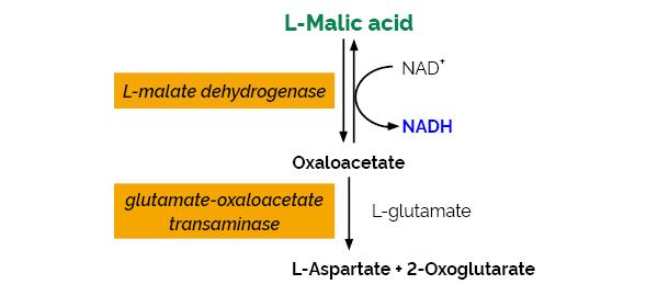 Scheme-K-LMALQR LMALQR Megazyme